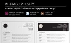 Original CV template